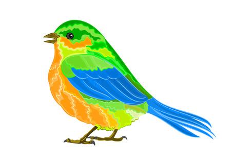 chickadee: Litle birdie vector illustration eps 8  without gradients Illustration