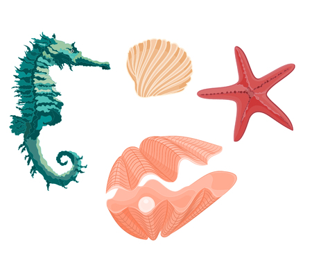 saltwater pearl: Collection marine life seahorse starfish and seashell svector illustration eps 8  without gradients Illustration