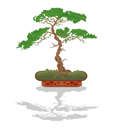 Bonsai tree in a decorative bowl vector illustration without gradients Vector