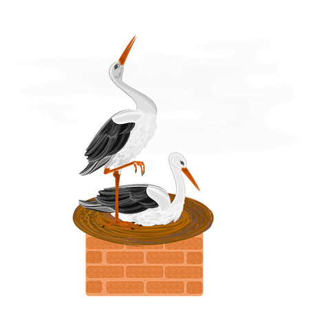 Storks and nest on a brick chimney