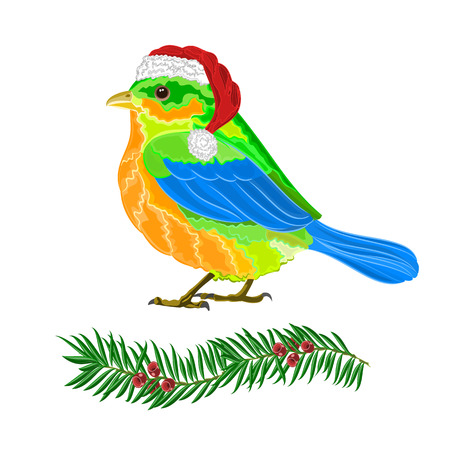 yew: Christmas decoration bird and twig yew vector