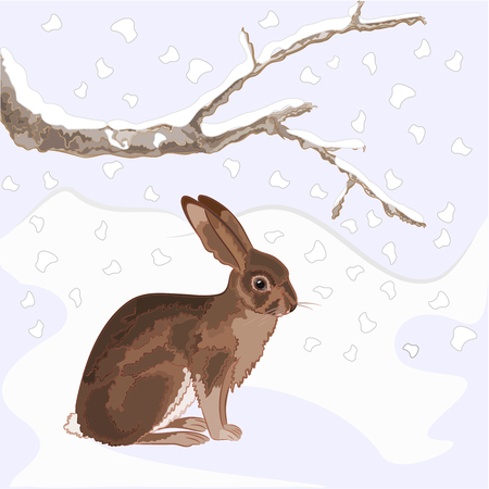christmas motive: Bunny and snow with old branches christmas theme