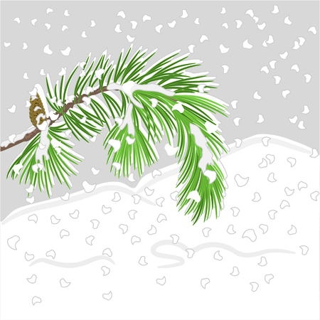 snow cone: Branch of Christmas tree  with snow Pine branch whit pine cone vector illustration Illustration