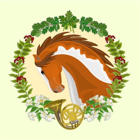 piebald: Piebald horse head of stallion leaves and french horn hunting theme vector illustration Illustration