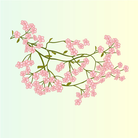 Spring flowers cherry blossoms background vector illustration spring flowers cherry blossoms background vector illustration royalty free cliparts vectors and stock illustration image 35034664 mightylinksfo