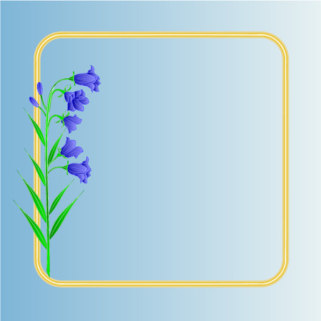 campanula: Bluebell  campanula meadow spring flower blue background place for text vector illustrations