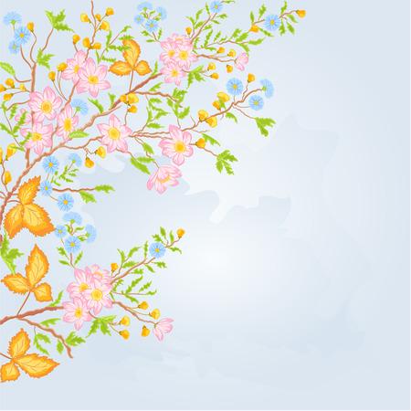 shrub: Twig shrub whit spring flowers background spring Theme vector illustration
