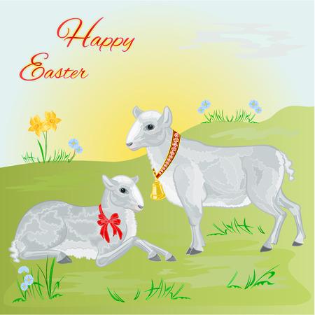 pasen schaap: Pasen lam en schapen en narcis Pasen achtergrond voor tekst vector illustratie Stock Illustratie