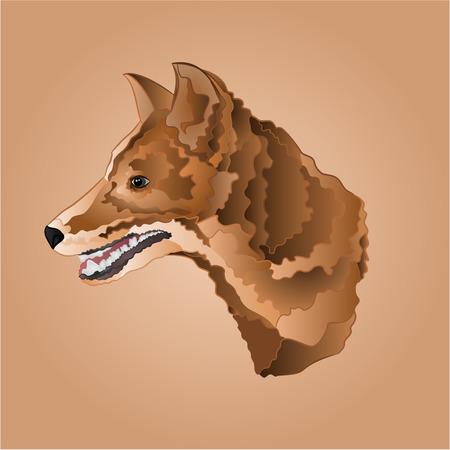 domestic animal: Brown dog head domestic animal vector illustration