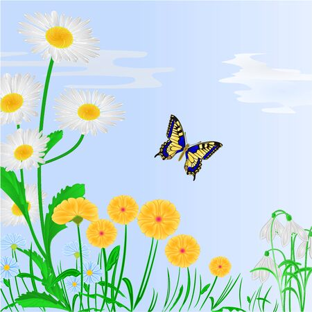 inachis: Spring flowers and butterfly blue background vector illustration