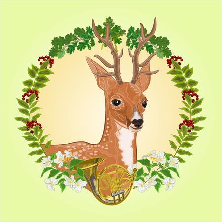 french horn: Young deer frame leaves and french horn hunting theme vector illustration