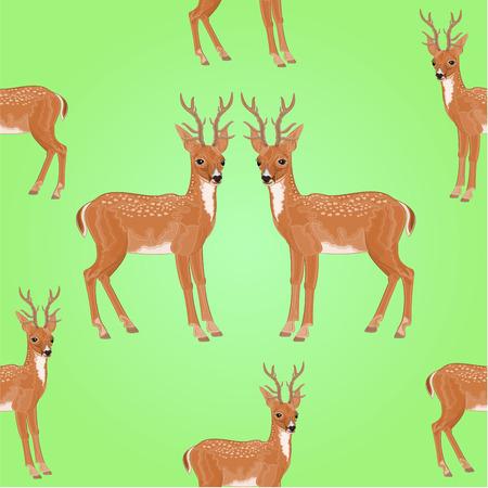 Naadloze textuur jonge herten wilde dieren vector illustratie Vector Illustratie