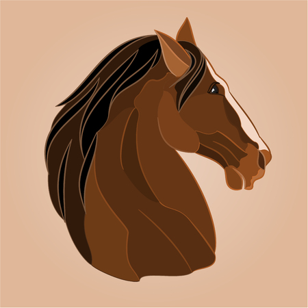 brown horse: The head of a brown horse stallion drawing vector illustration