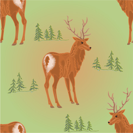 ungulate: Seamless texture young deer in the forest  wild animal vector illustration