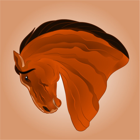 brown horse: The head of light brown horse stallion drawing vector illustration