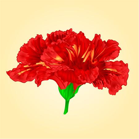 tropics: Flower red hibiscus blossom simple tropics flower vector illustration