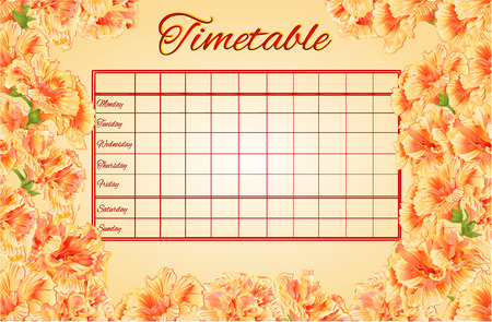 weekly: Timetable weekly schedule with hibiscus school timetable vector illustration