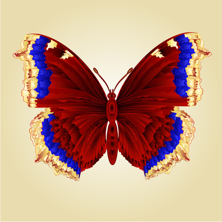 nymphalis: Butterfly Nymphalis antiopa beautiful mountain butterfly vector illustration Illustration