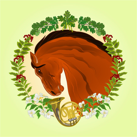 french horn: The head  brown Horse leaves and french horn hunting theme vector illustration