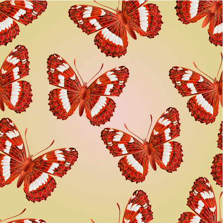 Seamless texture butterfly Limenitis camilla  beautiful forest butterfly vector illustration Vector