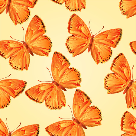 lycaena: Seamless texture butterfly Lycaena virgaureae  vector illustration