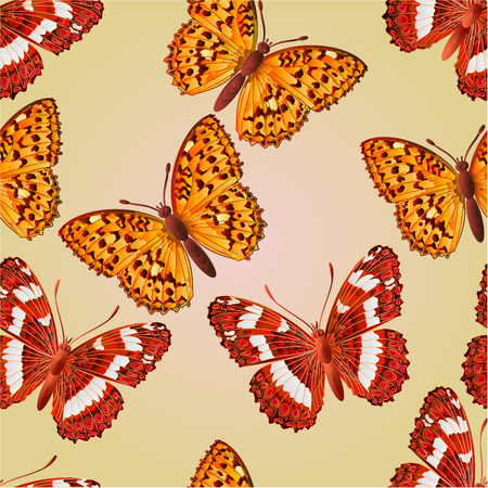 Seamless texture butterfly Limenitis camilla  and Argynnis aglaja beautiful butterfly vector illustration Vector
