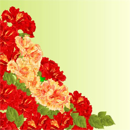 shrub: Flowering shrub red and yellow hibiscus floral background vector illustration