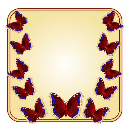nymphalis: Frame with  butterflies Nymphalis antiopa greeting card festive background place for text vector illustration Illustration