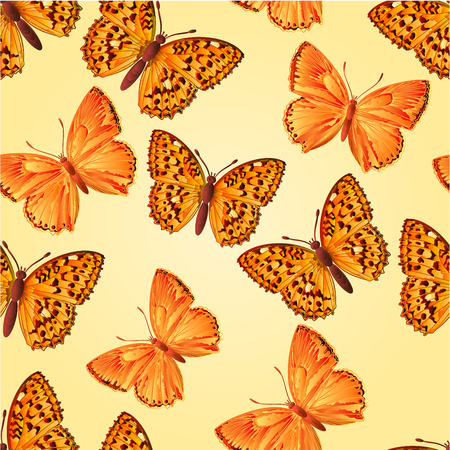 lycaena: Seamless texture butterfly Lycaena virgaureae  and Argynnis aglaja  beautiful butterfly vector illustration