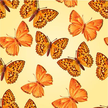 virgaureae: Seamless texture butterfly Lycaena virgaureae  and Argynnis aglaja  beautiful butterfly vector illustration