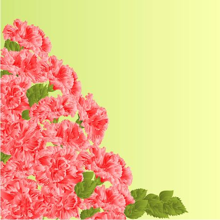 shrub: Flowering shrub pink hibiscus floral background vector illustration