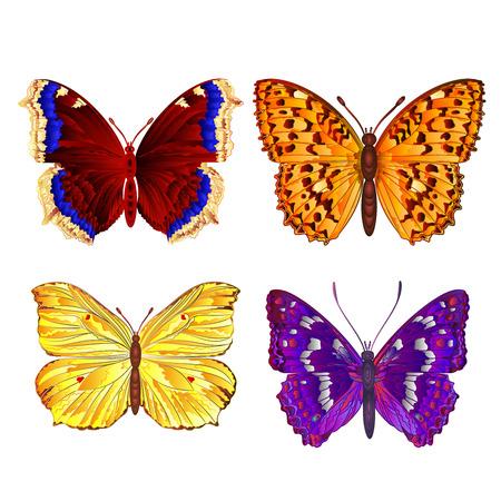mountain meadow: Mariposas varios prado de la monta�a y las mariposas forestales vectorial Vectores