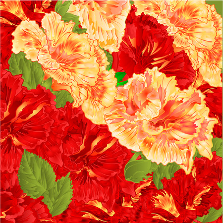 shrub: Red and yellow flowering shrub floral background vector illustration