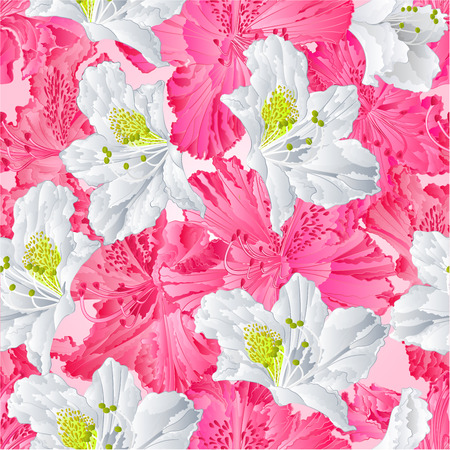 azal�e: Seamless rose texture de rhododendrons et de fleur blanche Montagne vecteur arbuste illustration Illustration