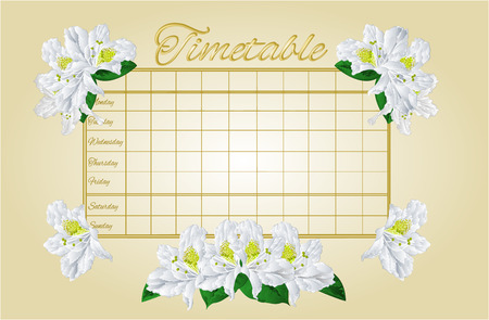 weekly: Timetable weekly schedule with white rhododendron school timetable vector illustration