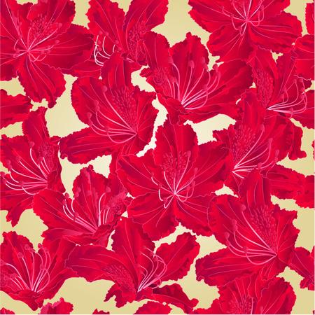 azal�e: Seamless texture fleur rouge vecteur Montagne rhododendron arbuste illustration