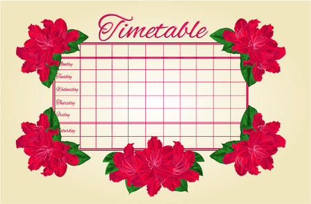 school schedule: Timetable weekly schedule with red rhododendron school timetable vector illustration