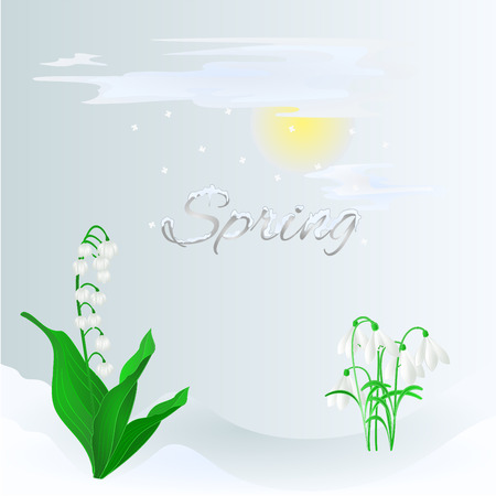 valley: Spring lily of the valley and snowdrops  in the snow vector illustration