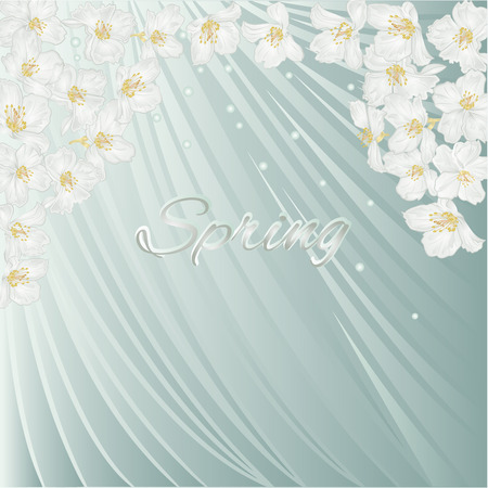 dewdrops: Spring blue background with blossoms jasmine  and  dewdrops,  vector illustration Illustration
