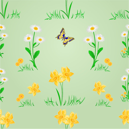io: Seamless texture spring meadow narcissus and daisy with butterfly vector illustration Illustration