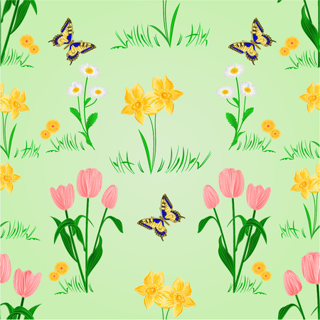 io: Seamless texture spring flowers narcissus tulips and daisy with butterfly vector illustration