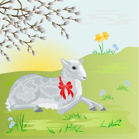 pasen schaap: Pasen lam op de weide en pussy wilg Pasen achtergrond vector illustratie