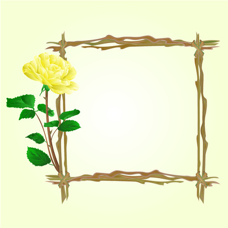 twigs: The frame from twigs with yellow rose vector illustration