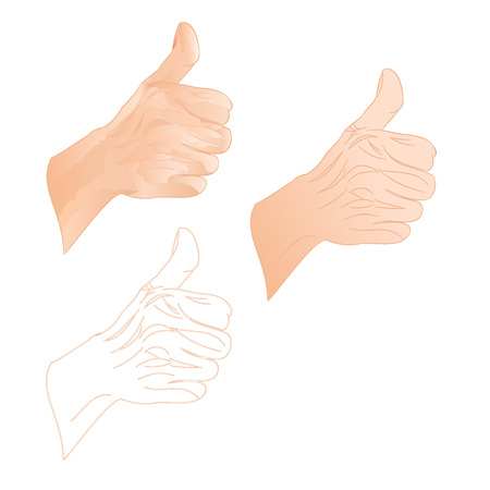 human hand: Human hand right O.K. three color drawing and outline vector illustration Illustration
