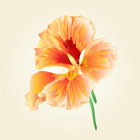 berros: El berro de flores de primavera de verduras ilustraci�n de la comida sana