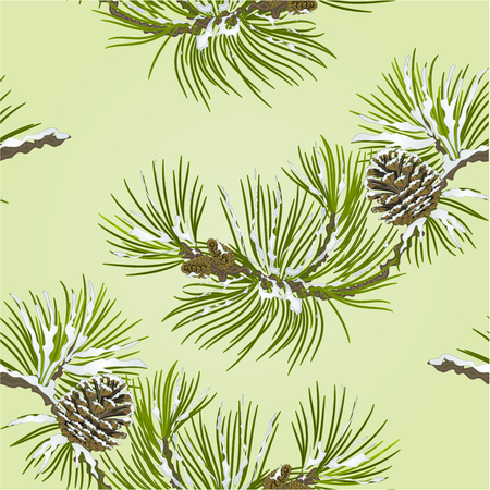 snow cone: Seamless texture Pine branch with snow and pine cone  vector illustration Illustration