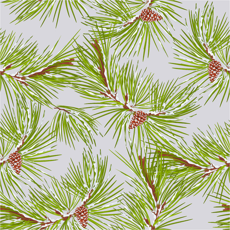 snow cone: Seamless texture of pine tree with snow and pine cone  vector illustration Illustration