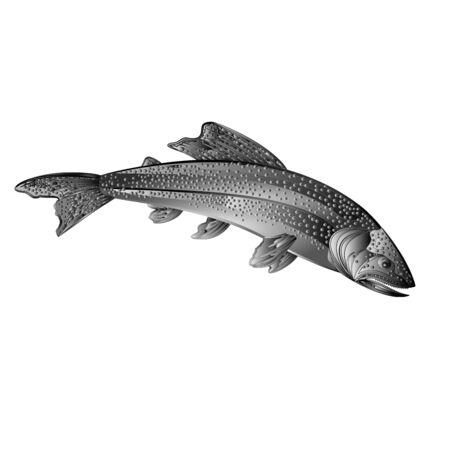 American brook trout salmon-predatory fish as wrought metal vintage vector illustration