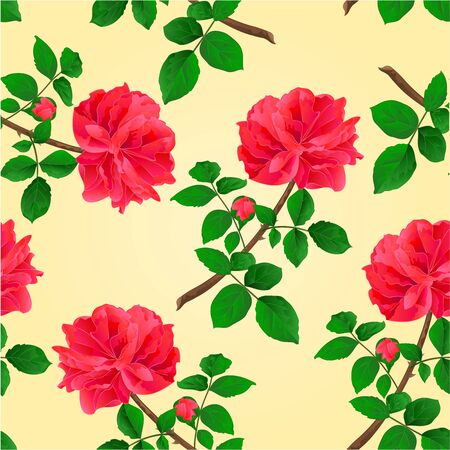freshens: Seamless texture twig red rose  with leaves and bud illustration
