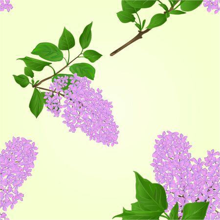 Nahtlose Textur Flieder mit Blumen Zweig und Blätter natürlichen Hintergrund Illustration